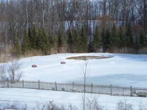 Still Point labyrinth next to the snow covered pond.