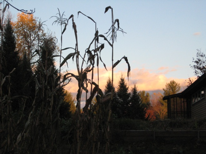 Where you can write and learn in the beauty of fall, at Still Point Retreat Center.